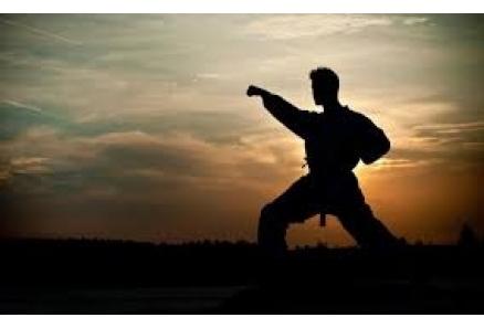 Dövüş sanatları Nedir